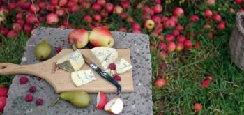 Cashel Farmhouse Cheesemakers